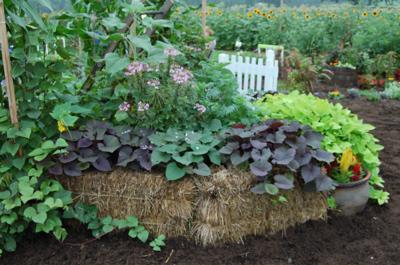 Cadillac Garden Club Straw Bale Gardening